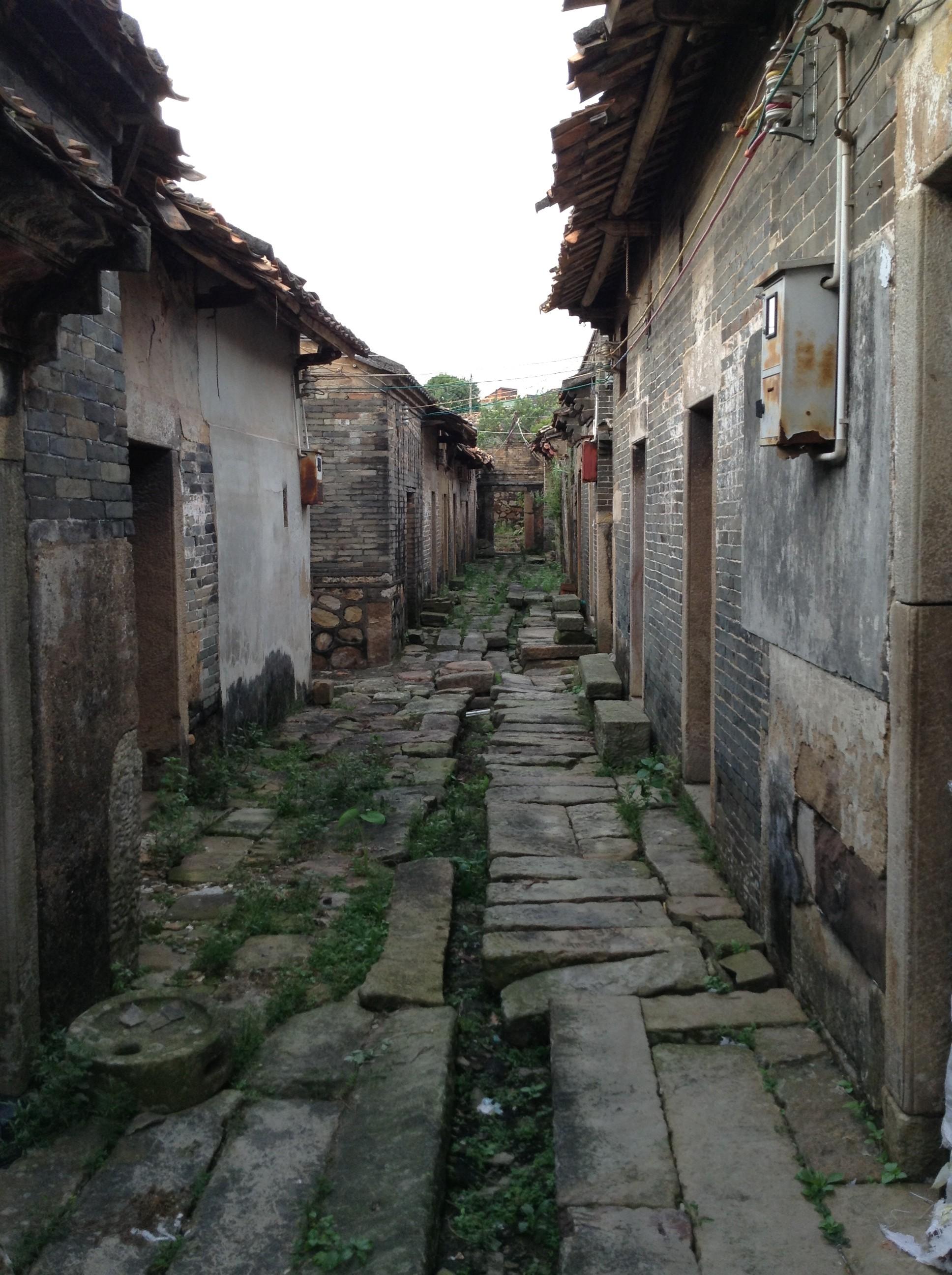 котик деревня