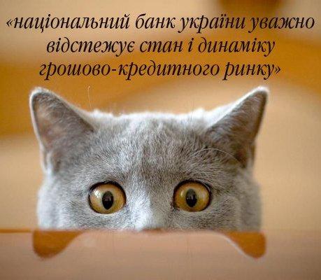 кот.банк