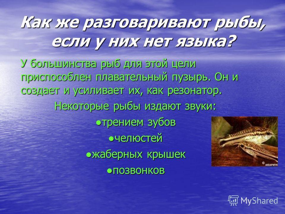 как.разговаривают.рыбы