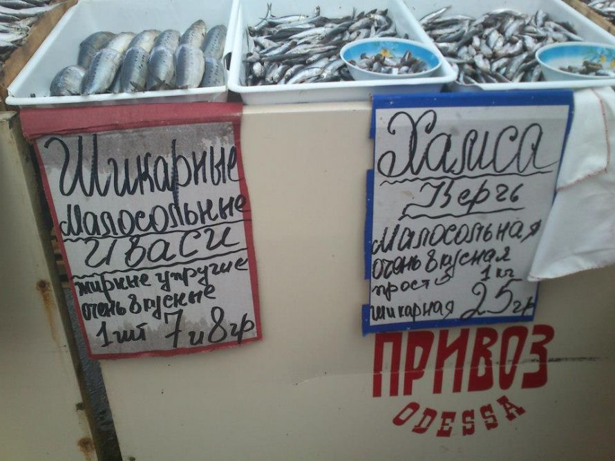 гопп.одесса.7