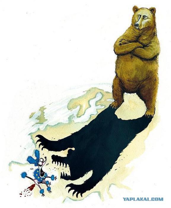 рф.медведь.терроирст