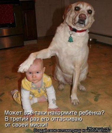 смех.фото.1