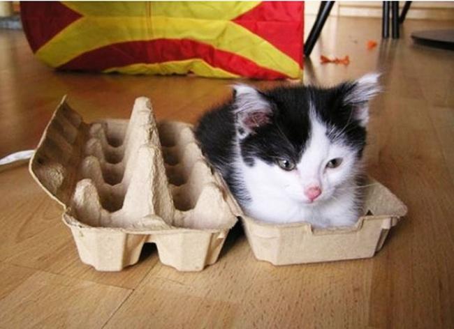 кот.жидк.удобно.