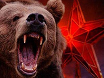 медведь.агрессор.
