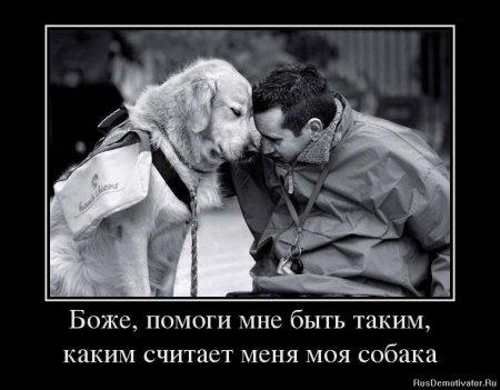 боже.помоги.быть.как.считает.собака.