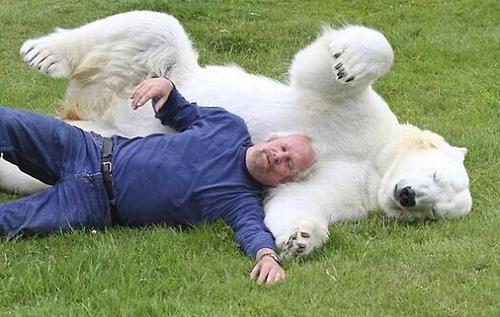 медведь.друг.человека.