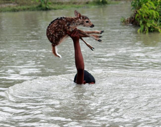 бангладеш.