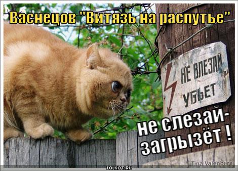 вит.на.расп.