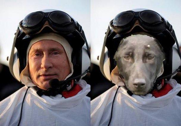 пу.и.собака.