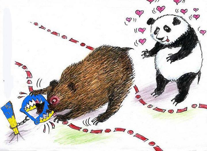 панда.сзади.к.медведю.